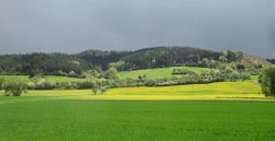 Frühling am Dörnberg
