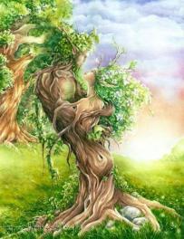 Sitaram Baum