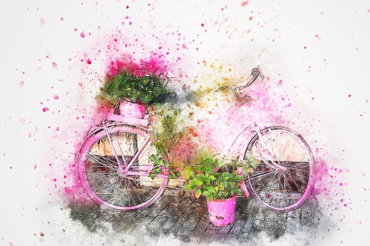 Fahrrad 02.jpg