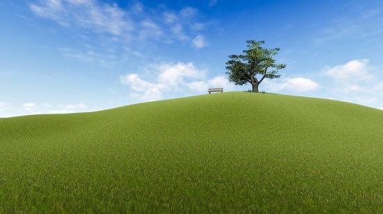 Anhöhe mit Baum
